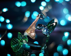 Humming Bird (ironicdream) Tags: blue glass reflections bokeh bird minolta vintageprime minoltamd50mm sony a6000 7dwf flickrlounge weeklytheme mmelle lookingcloseonfriday