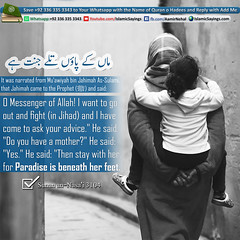 Paradise-is-beneath-her-feet. (aamirnehal) Tags: quran hadees hadith seerat prophet jesus moses book aamir nehal love peace quotes allah muhammad islam zakat hajj flower gift sin virtue punish punishment teaching brotherhood parents respect equality knowledge verse day judgement muslim majah dawud iman deen about son daughter brother sister hadithabout quranabout islamabout riba toheed namaz roza islamic sayings dua supplications invoke tooba forgive forgiveness mother father pray prayer tableegh jihad recite scholar bukhari tirmadhi