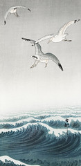 Three seagulls (1900 - 1936) by Ohara Koson (1877-1945). Original from the Rijks Museum. Digitally enhanced by rawpixel. (Free Public Domain Illustrations by rawpixel) Tags: animal antique art asian bird drawing illustration japan japanese koson name ohara oharakoson old paint sea seagulls vintage