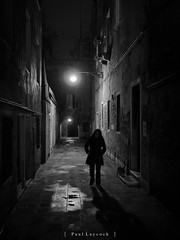 All The Right Friends (amipal) Tags: night venice animal cat street travel italy europe shadow light texture reflections silhouette brick