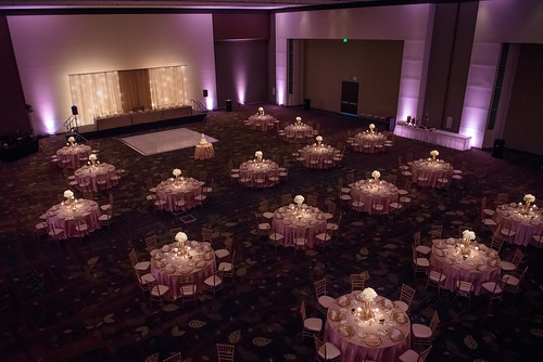 "Centerpiece Lighting at Double Tree Cedar Rapids • <a style=""font-size:0.8em;"" href=""http://www.flickr.com/photos/81396050@N06/42886618945/"" target=""_blank"">View on Flickr</a>"