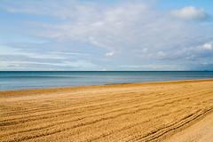 Freshly Groomed Beach