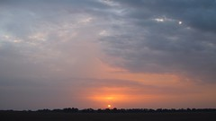 Sunrise 07/28/2018 Lebedin. Ukraine. (ALEKSANDR RYBAK) Tags: восход солнце рассвет солнечный свет лучи небо облака пейзаж ландшафт природа лето сезон погода атмосфера sunrise sun dawn solar shine beams sky clouds landscape nature summer season weather atmosphere sunset skyline dusk grass