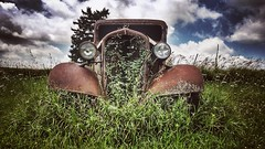 adaptation.... (BillsExplorations) Tags: rust truckthursday truck old vintage adaptation overgrown grill sky monroe wisconsin htt snapseed bleached country ruraldecay display