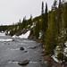 Yellowstone - Rough Nature