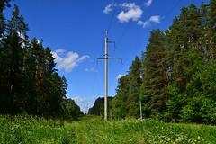 Powerline near Tarusa (МирославСтаменов) Tags: russia tarusa cutting powerline forest edge