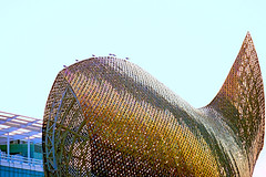 Baywatch (Fnikos) Tags: city construction architecture building seagull gavina fish peix pez sky outdoor