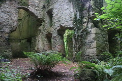 Near Tintern Abbey (elsewhereness) Tags: ireland tinternabbey abbey ruins abandoned derelict