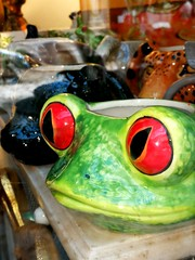 Freddy the frog (VauGio) Tags: frog rana shop negozio vetrina colore colour huawei p10 leica torino turin italia italy