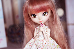 Meredith (~ Melody and the dolls ~) Tags: pullip pullips obitsu groove
