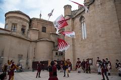 El Renaixement de Tortosa (rfabregat) Tags: tortosa terresdelebre xxiiifestadelrenaixement festadelrenaixement renaixement tradició tradition cultura culture