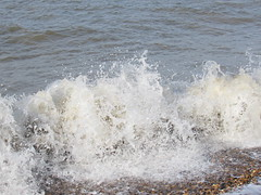 IMG_9641 (griffpops_deptford) Tags: whitstable reculver oysters seaside sea beach