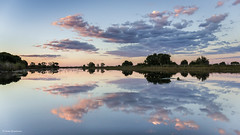 Reflections in the lagoon (He Ro.) Tags: 2018 africa afrika botswana safari southernafrica lagoon water okavangodelta reflections sky clouds wasser spiegelungen bpattrip sunset sonnenuntergang outdoor nature coth5 landscape waterscape shindeconcession ngc