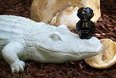 It's the Little Things, like this visitor from Mexico (Bennilover) Tags: stilllife crocodile mushroom figurine obsidian mexico garden littlethings carving lava molten teotihuacanmexico obsidianman