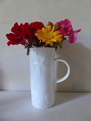 Pot of Flowers. (jenichesney57) Tags: