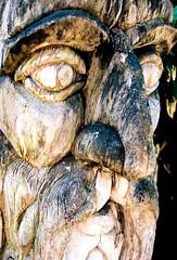 Wrought from Well-Weathered Wood (mkk707) Tags: film analog wwwmeinfilmlabde leicaflexsl2 summicronr50mm bwpolarizingfilter kodakektar100 35mmfilm vintagelens vintagefilmcamera itsaleica art sculpture wood bodensee mainau