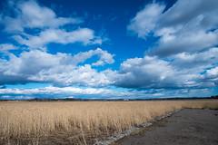 DSCF8370.jpg (bhargav dave) Tags: spring finland espoo clouds