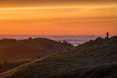 Sunset on Russian Ridge (Kirk Lougheed) Tags: california midpeninsularegionalopenspacedistrict russianridge russianridgeopenspacepreserve santacruzmountains usa unitedstates cloud hill landscape outdoor sky sunset