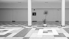 the plant (ELECTROLITE photography) Tags: theplant diepflanze plant pflanze lusine säulen kacheln fliesen architektur architecture blackandwhite blackwhite bw black white sw schwarzweiss schwarz weiss monochrome einfarbig noiretblanc noirblanc noir blanc electrolitephotography electrolite minimal