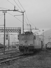 domo II set 68 #6 (train_spotting) Tags: beuracardezza domoii tigre tigrone e652028 trenitaliacargo trenitalia ticargo divisionecargo mir merciitaliarail nikond7100