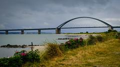 Tag 24 (3) (uwesacher) Tags: holstein schleswik deutschland pause gras meer wasser himmel brücke bucht baum landschaft fehmarn sund sand strand wolken ostsee düne fehmarnsundbrücke
