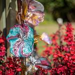 Glass flowers with lobelia thumbnail