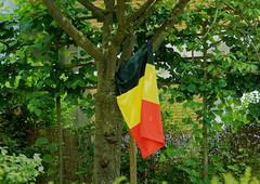 Fête Nationale - Pause - National Day - Break (p.franche malade - sick) Tags: drapeau fêtenationale flag nationalday sony sonyalpha65 dxo photolab bruxelles brussel brussels belgium belgique belgïe europe pfranche pascalfranche schaerbeek schaarbeek