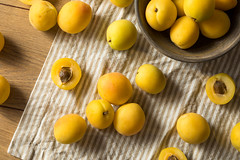 Raw Yellow Organic Angelcot Apricots (brent.hofacker) Tags: angelcot apricot apricots background cut dessert diet food fresh freshness fruit gourmet health healthy ingredient juicy market nature orange organic peach plant raw ripe season seed spring stone summer sweet tasty vegetarian vitamin white whiteapricot whiteapricots yellow yellowapricot yellowapricots