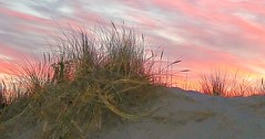 Sand dunes (lesleydugmore) Tags: sand sanddunes snowdonia snowdonianationalpark wales northwales beach uk britain grass sky pink blue orange clouds outside outdoors sunset dusk