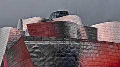 Bilbao - Musée Guggenheim. (Gilles Daligand) Tags: bilbao muséeguggenheim architecture frankgerry fuji s5pro