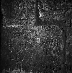 In the book of stone... (RoryO'Bryen) Tags: stone inscription language fragment copyrightroryobryen roryobryen rolleiflex scribbles eternity cambridge kodaktrix rodinal selfdeveloped standdeveloped blackandwhite noiretblanc argentique biancoenero pretoebranco branco mediumformat