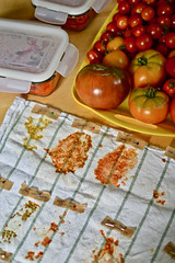 How to mark your saved tomato seeds while they are drying (pakovska) Tags: garden gardening potager vegetable tomatoes kitchengarden kitchen moestuin volkstuin