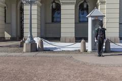 Palacio real - Oslo (José M. Arboleda) Tags: arquitectura edificio cielo calle gente estatua nieve palacio real carlxivjohan rey suecia noruega oslo eos markiv josémarboledac ventana guardia ef1635mmf4lisusm canon 5d