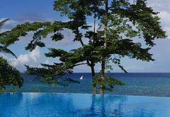 Shades of Blue (louise peters) Tags: zanzibar pool infinitypool blue blauw zwembad boom tree palm dhow boot zeilboot zee sea ocean oceaan