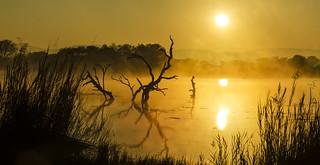 Entabeni Sunrise Pan more