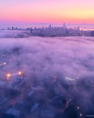 Fog City - San Francisco (davidyuweb) Tags: fog city san francisco sanfrancisco low luckysnapshot 三藩市