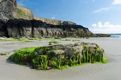 Rock and seaweed (mikeplonk) Tags: pembrokeshire westwales wales stbridesbay rocks beach sea seascape seaweed druidstonhaven sand nikon d5100 18140mm kitlens