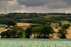 Save Our Green Belt (1608leeowen) Tags: billinge rainford