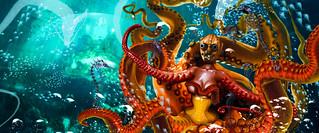 The Kraken .