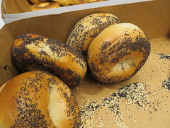 Poppy Seed Bagels (earthdog) Tags: 2018 food work office edible needstitle canon sx730hs powershot canonpowershotsx730hs poppy seed poppyseed bagel