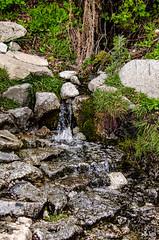 Waterstream (D00m@) Tags: yosemitenationalpark california unitedstates us waterstream runningwater water nature stream yosemite