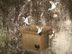CARTA / 1 (.UNO) Tags: uno idontcareaboutuno aboutuno cvtastreetfest cvtàstreetfest civitacampomarano molise dontcareaboutuno origami bird cranes origamicranes box stencil art arte contemporaryart streetart urbanart kinder icon