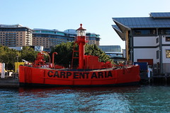 """CARPENTARIA"" An Unmanned Lightship (Pamela Jay) Tags: carpentaria unmannedlightship sea red gas gulf commonwealth floating wharf7 australianmaritimemuseum 1917 pamelajay sydney nsw australia"