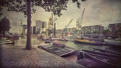 Museo marítimo.  Rotterdam (Marina Is) Tags: rotterdam