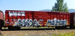 Sonar Kezum (arrowlakelass) Tags: graffiti train freight boxcars steel paint p1190102edit