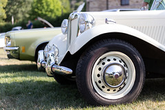 MG (cameronestrada) Tags: cameron estrada larz anderson cars coffee july 2018 mg td roadster convertible cabriolet speedster classic vintage car vehicle automobile wheel rim tire