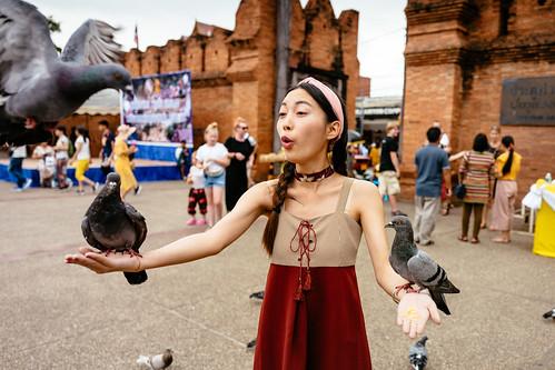 Feeding pigeons at Thae Pae gate, Chiang Mai_1
