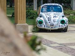 الخنفساء الموشومة (Tarek Ezzat) Tags: volkswagen beetle فولكس خنفساء سيارة حديقة مصر الجديدة الميريلاند heliopolis cairo garden car