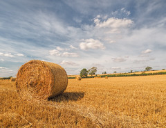 After the Harvest (grbush) Tags: summer countryside rural field harvest hay northamptonshire england agriculture clouds sky bluesky olympusm918mm m43 olympus em10mark11