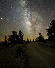 Milky Way Saturday Night (Jeffrey Sullivan) Tags: milky way pine trees inyo national forest mono county california usa easternsierra astronomy astrophotography landscape nature travel night photography workshop canon eos 6d photo copyright august 2018 jeff sullivan